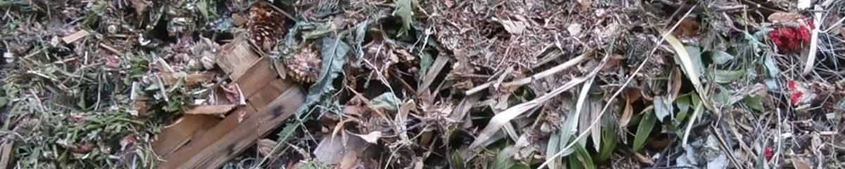 Gartenarbeit – wie man vieles leichter macht