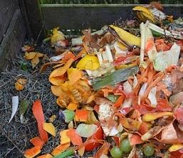 auf den Kompost